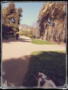 RUTA_NOU_BARRIS_01_PARADA_5.1