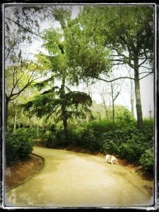RUTA_SANT_ANDREU_03_PARADA 3.0