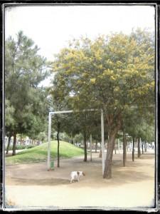 RUTA_09_EL_CLOT_PARADA_3.5