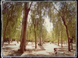 RUTA_09_EL_CLOT_PARADA_6.13