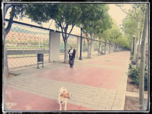 RUTA_NOU_BARRIS_07_PARADA 10