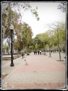 RUTA_NOU_BARRIS_07_PARADA 7