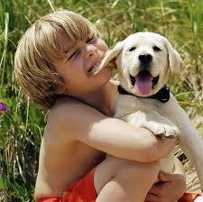 perro con niño oreja