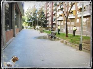 RUTA_SANT_ANDREU_PARADA_3