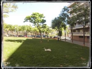 RUTA_SANT_ANDREU_PARADA_3.3