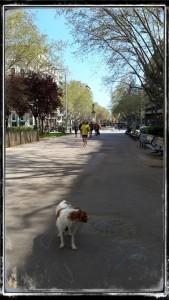 RUTA_SANTS_PARADA 3.11